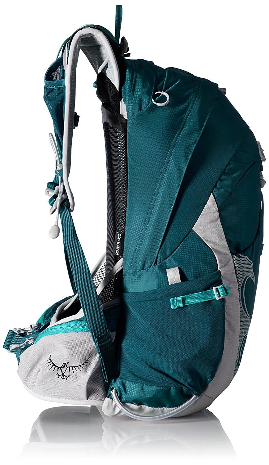 Osprey Packs Women s Tempest 20 Backpack Product Review  9d8bc931d4571